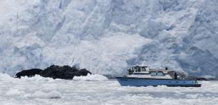 Boat GLacier